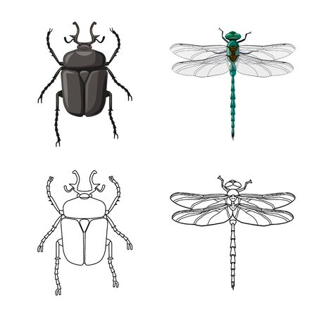 Vector illustration of insect and fly icon. Set of insect and element stock symbol for web.
