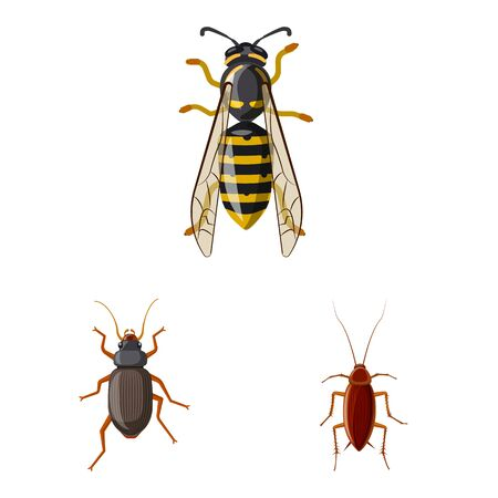 Isolated object of insect and fly symbol. Collection of insect and element vector icon for stock. 일러스트