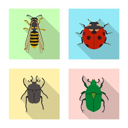 Isolated object of insect and fly logo. Collection of insect and element stock vector illustration. 일러스트