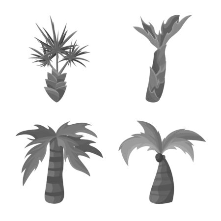 Isolated object of jungle and botanical sign. Collection of jungle and flora stock symbol for web.