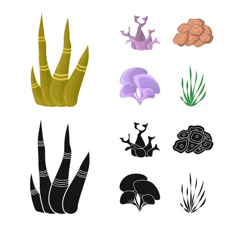 Vector illustration of biodiversity and nature sign. Collection of biodiversity and wildlife vector icon for stock.