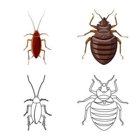 Vector illustration of insect and fly  . Collection of insect and element stock symbol for web.