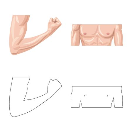 Vector design of human and part sign. Set of human and woman stock symbol for web.