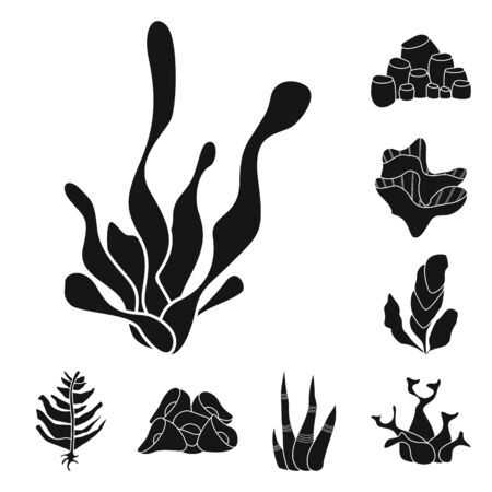 Isolated object of decoration and wildlife sign. Set of decoration and aquarium vector icon for stock.