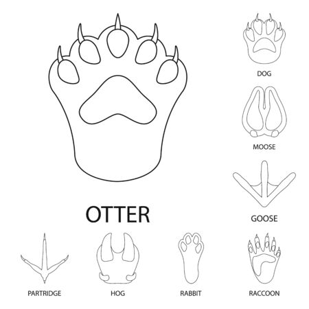Vector design of foot and footprint sign. Collection of foot and trace stock symbol for web. Vettoriali