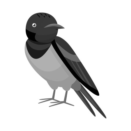 Vector illustration of bird and nightingale icon. Set of bird and small stock symbol for web. Иллюстрация