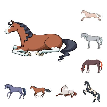 Isolated object of animal and stallion icon. Collection of animal and farm stock vector illustration. Illustration
