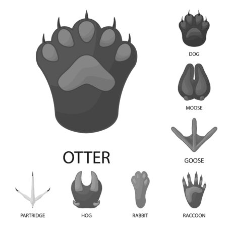 Isolated object of wildlife and trace sign. Collection of wildlife and walk stock symbol for web.