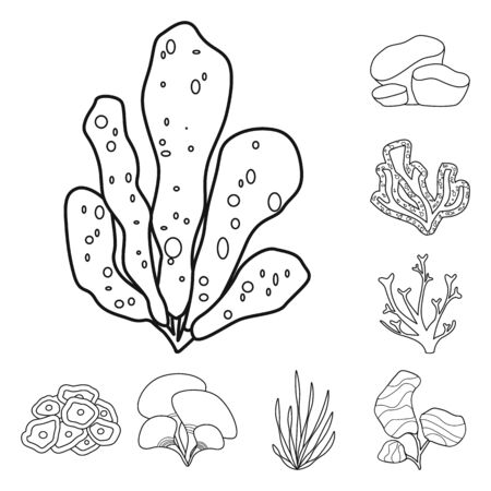 Isolated object of sea and ocean sign. Collection of sea and flora stock vector illustration.