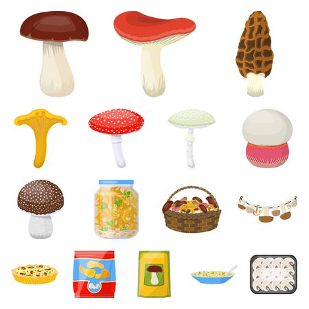 Vector illustration of fungus and food sign. Set of fungus and fresh stock symbol for web.