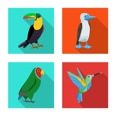 Vector design of animal and wild symbol. Collection of animal and natural stock vector illustration. Stock Vector - 132790874
