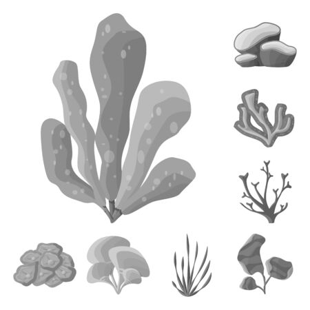 Vector illustration of botanical and flora. Collection of botanical and nature stock symbol for web.