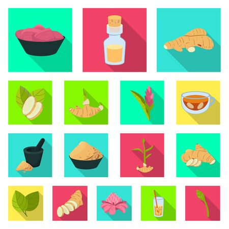 Isolated object of fresh and product sign. Set of fresh and asian vector icon for stock.