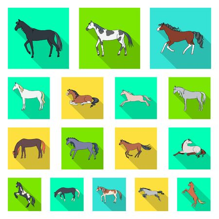 Isolated object of breed and equestrian sign. Set of breed and mare stock vector illustration. 矢量图像