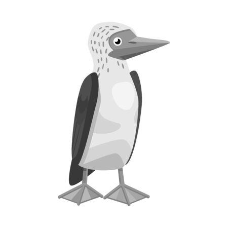 Vector illustration of bird . Collection of bird and blue stock vector illustration. Stock Vector - 133348481