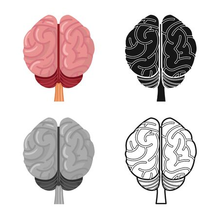 Isolated object of cerebrum and hemisphere icon. Web element of cerebrum and gyri vector icon for stock.