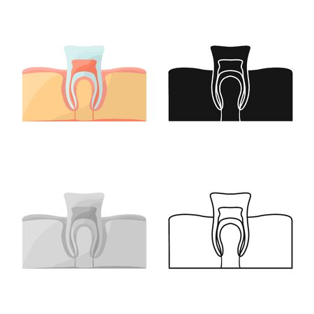 Isolated object of tooth and gingiva symbol. Graphic of tooth and clean stock symbol for web. Illustration