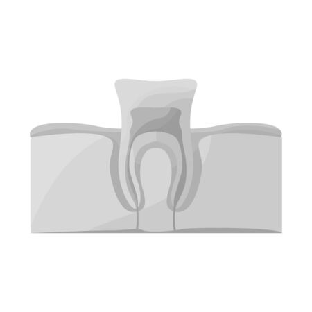 Vector design of tooth and gingiva icon. Web element of tooth and clean stock vector illustration. Illusztráció