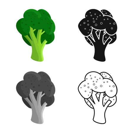 Isolated object of broccoli and doodle symbol. Collection of broccoli and salad vector icon for stock.