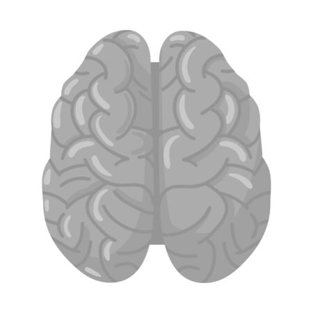 Isolated object of cerebrum and hemisphere icon. Graphic of cerebrum and gyri stock vector illustration.