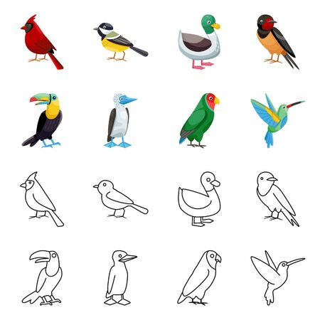 Vector design of animal and wild icon. Set of animal and natural stock vector illustration.