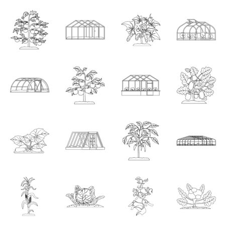 Isolated object of greenhouse and plant symbol. Collection of greenhouse and garden stock vector illustration.