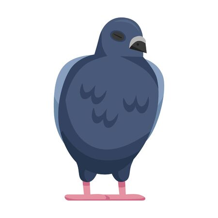Pigeon vector icon.Cartoon vector icon isolated on white background pigeon.