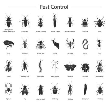 Bug des Insektenvektors schwarz set icon.Vector Illustration Insektenkäfer. Isolierte schwarze Symbolwanze und Fliegenkäfer.