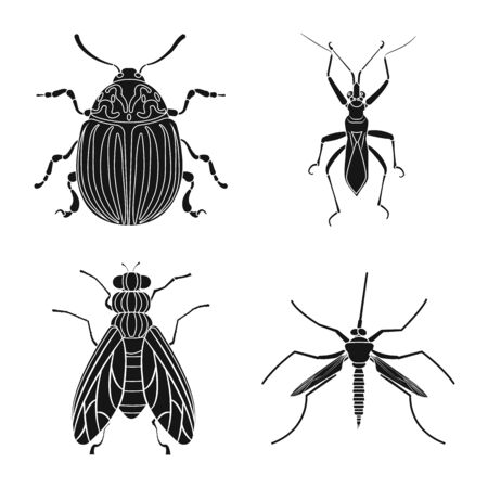Vector illustration of insect and fly symbol. Collection of insect and element stock symbol for web.