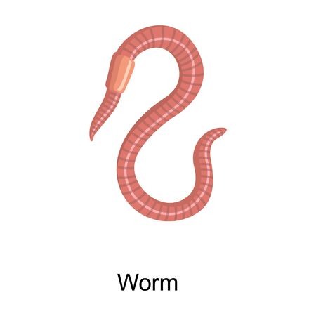 Earthworm vector icon.Cartoon vector icon isolated on white background earthworm.
