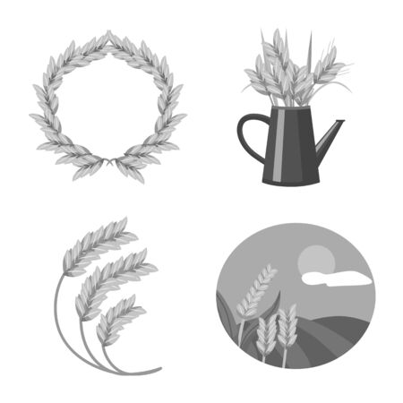 Vector illustration of grain and harvest symbol. Collection of grain and farm vector icon for stock. Illustration
