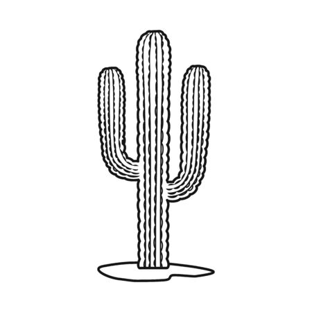 Vector illustration of cactus and houseplant logo. Web element of cactus and succulent stock vector illustration. Çizim