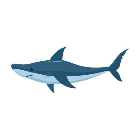 Fish shark vector icon.Cartoon vector icon isolated on white background fish shark .