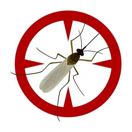 Mosquito vector icon.Cartoon vector icon isolated on white background mosquito. Vektorgrafik