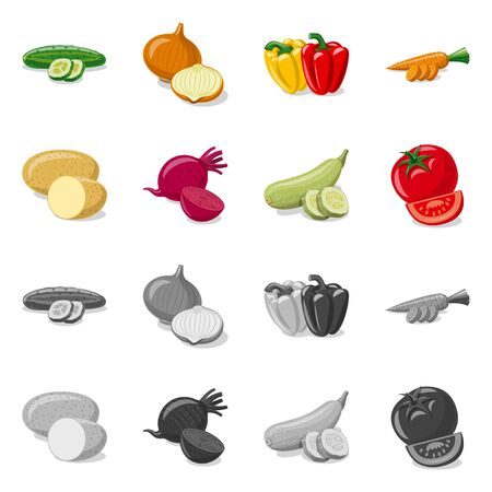 Isolated object of vegetable and fruit . Collection of vegetable and vegetarian stock vector illustration.