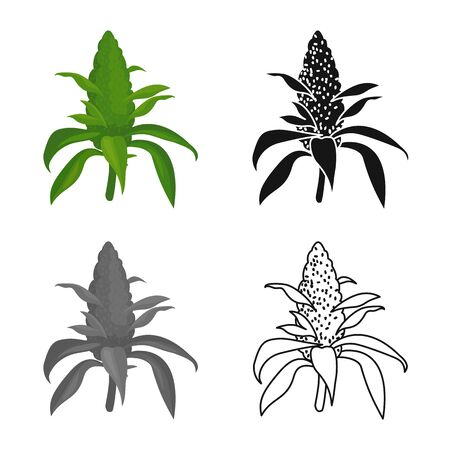 Vector design of bud and marijuana sign. Graphic of bud and inflorescence stock symbol for web.
