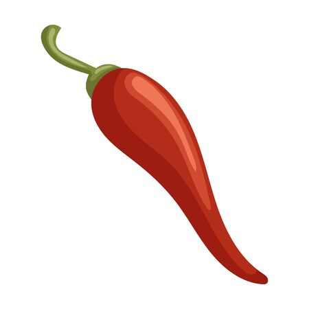 Pepper chili vector icon.Cartoon vector icon isolated on white background pepper chili .