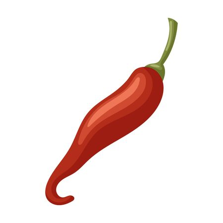 Spicy pepper vector icon.Cartoon vector icon isolated on white background spicy pepper . Stock Illustratie