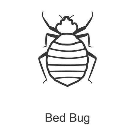 Bedbug vector icon.Line vector icon isolated on white background bedbug. Illustration