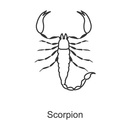 Scorpion vector icon.Line vector icon isolated on white background scorpion.