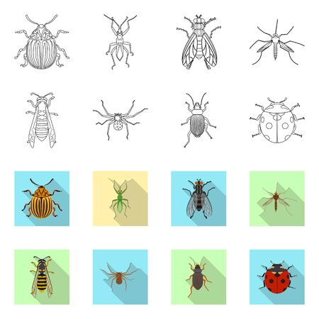 Vector design of insect and fly Collection of insect and element stock symbol for web.