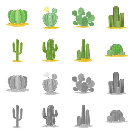 Vector design of botanical and oasis . Set of botanical and vegetative vector icon for stock.