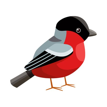 Vector design of bullfinch and bird icon. Collection of bullfinch and robin stock symbol for web. Ilustração