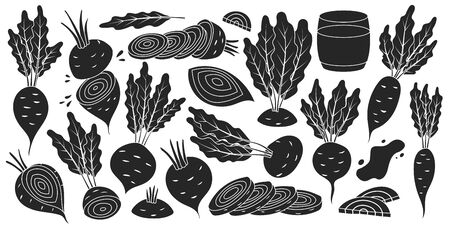 Vegetable of beet vector black set icon. Vector illustration beetroot root on white background .Isolated black set icons food of beet. Illusztráció