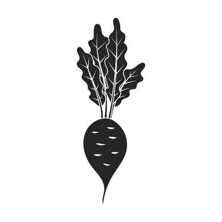 Beet vector icon.Black vector icon isolated on white background beet .