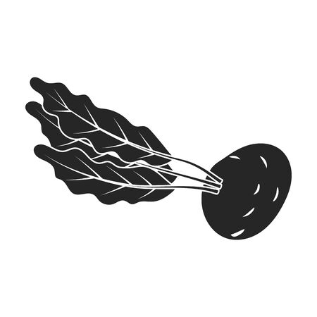 Beetroot vector icon.Black vector icon isolated on white background beetroot . Illusztráció