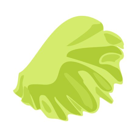 Vector design of salad and lettuce sign. Web element of salad and leaf stock symbol for web.