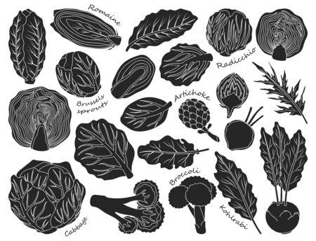 Cabbage of lettuce vector black set icon.Vector illustration set vegetable food. Isolated black icon cabbage of lettuce on white background .