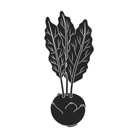 Cabbage of kohlrabi vector icon.Black,simple vector icon isolated on white background cabbage of kohlrabi .
