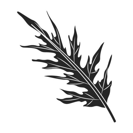 Leaf of cabbage vector icon.Black,simple vector icon isolated on white background leaf of cabbage .